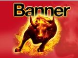 Banner akkumulátor